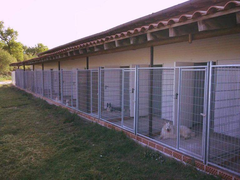 residencia canina gipuzkoa instalaciones